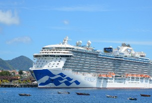 Princess Cruises cancels this year's Chinese trips amid virus crisis