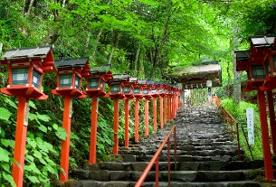 Kyoto launches 'empty tourism' campaign amid coronavirus outbreak