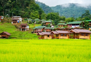 Rural homestays rule the roost amid COVID recovery